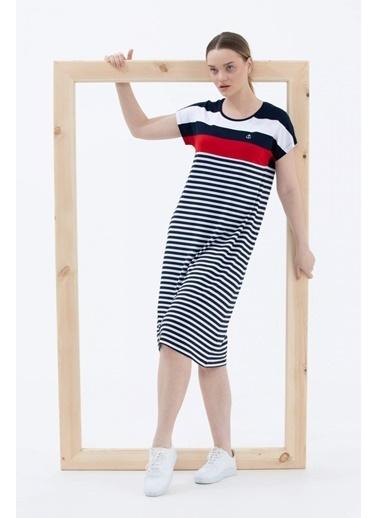Sementa Sıfır Yaka Midi Boy Marine Elbise - Lacivert Lacivert
